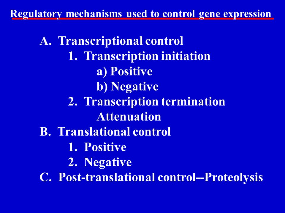 A. Transcriptional control 1. Transcription initiation a) Positive