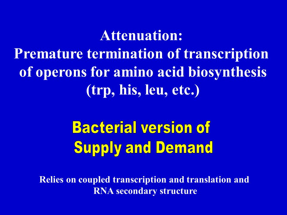 Premature termination of transcription