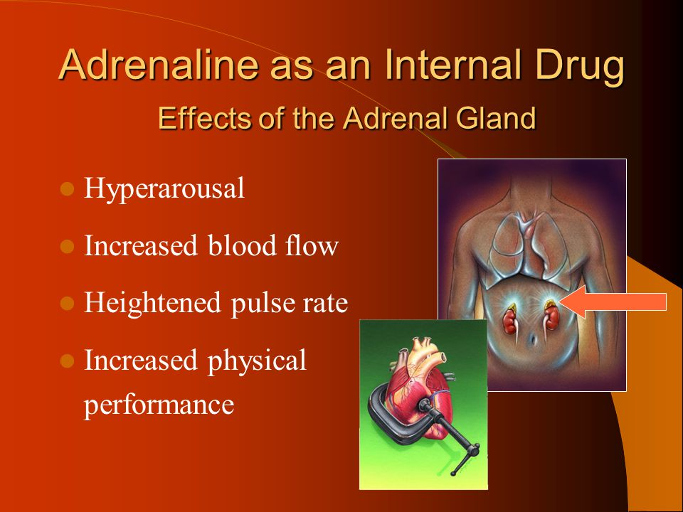 Adrenaline as an Internal Drug Effects of the Adrenal Gland