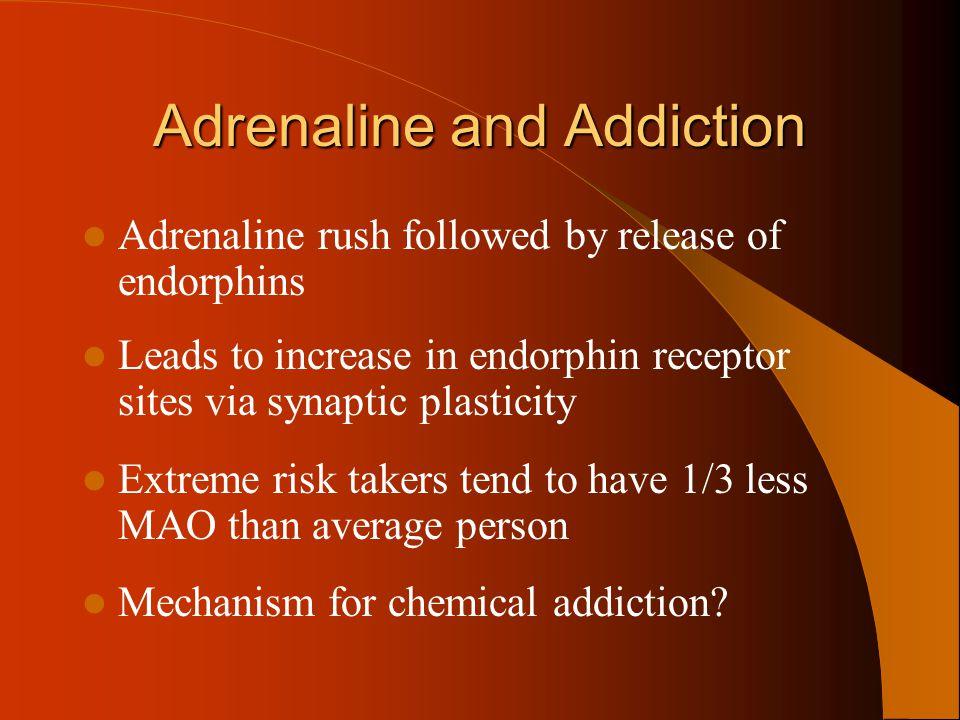 Adrenaline and Addiction