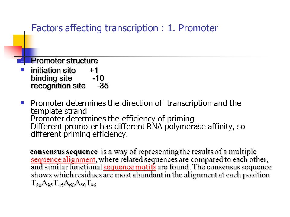 Factors affecting transcription : 1. Promoter