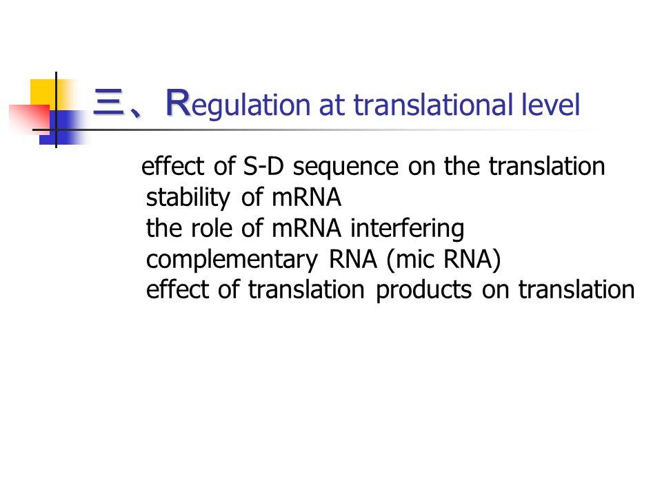 三、Regulation at translational level
