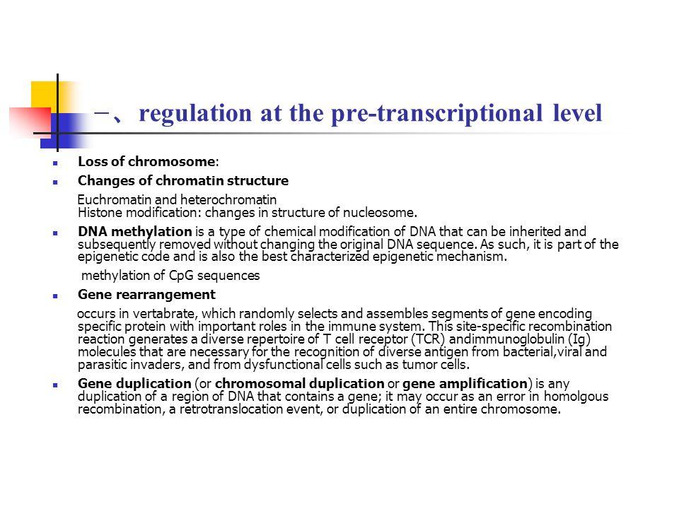 一、regulation at the pre-transcriptional level