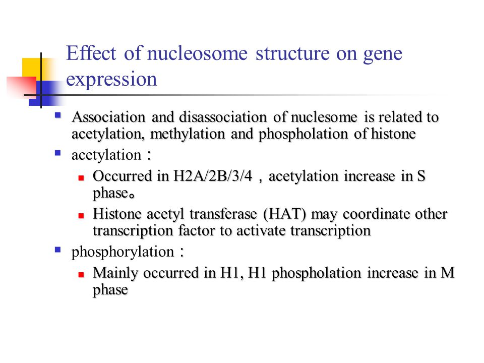 Effect of nucleosome structure on gene expression