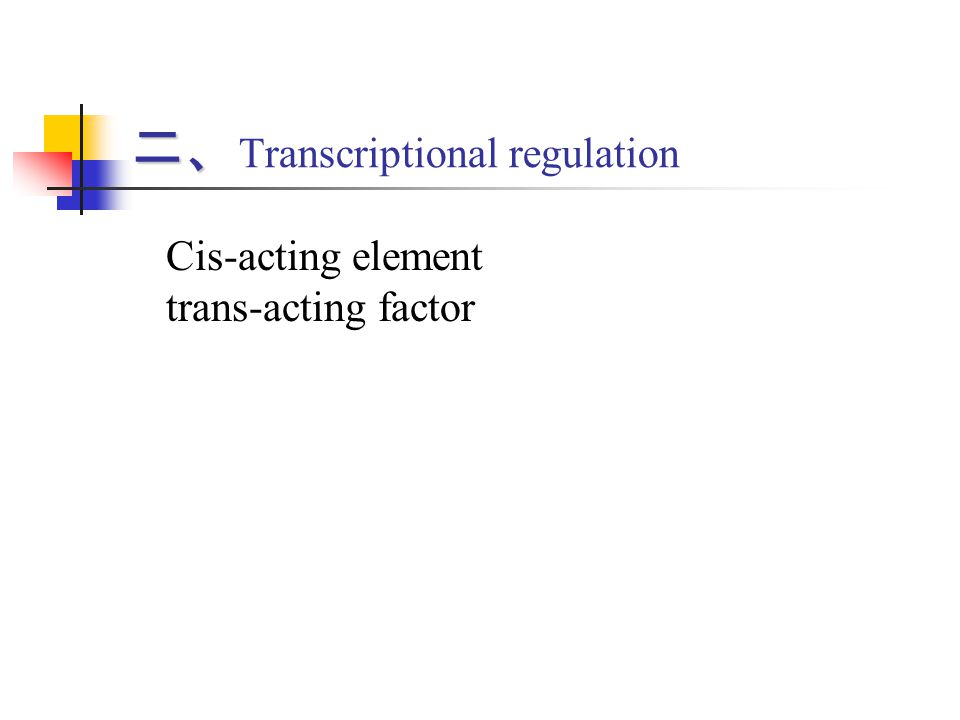 二、Transcriptional regulation