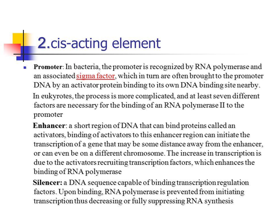 2.cis-acting element