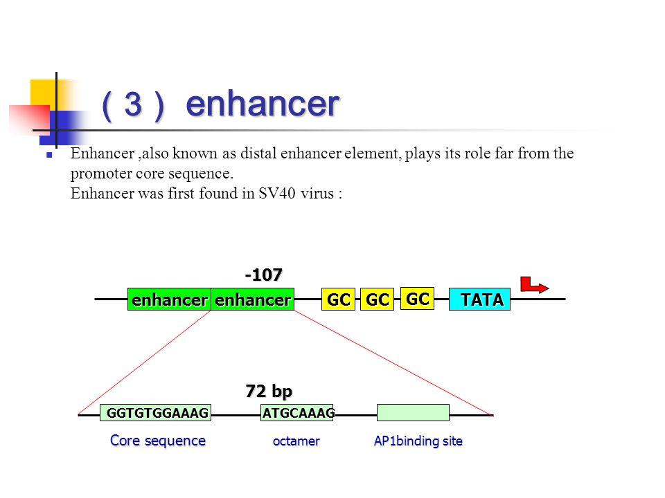 (3) enhancer