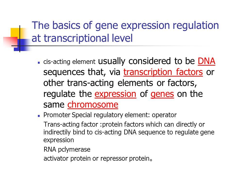 The basics of gene expression regulation at transcriptional level