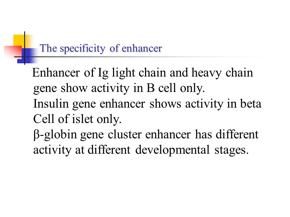 The specificity of enhancer