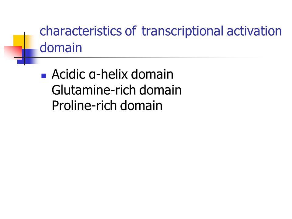 characteristics of transcriptional activation domain