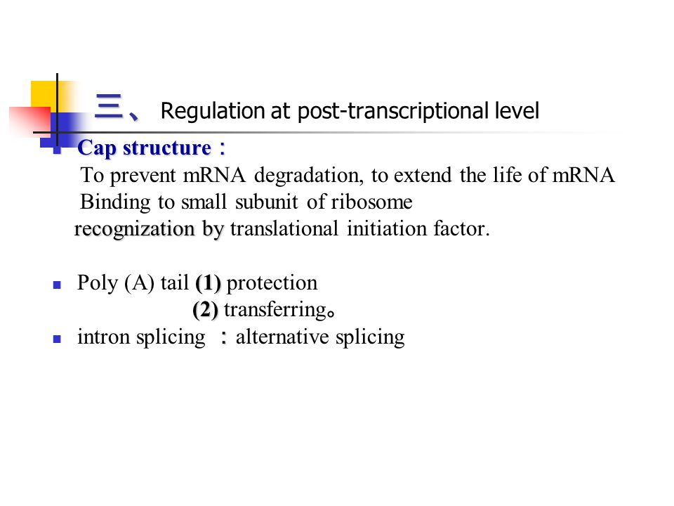 三、Regulation at post-transcriptional level