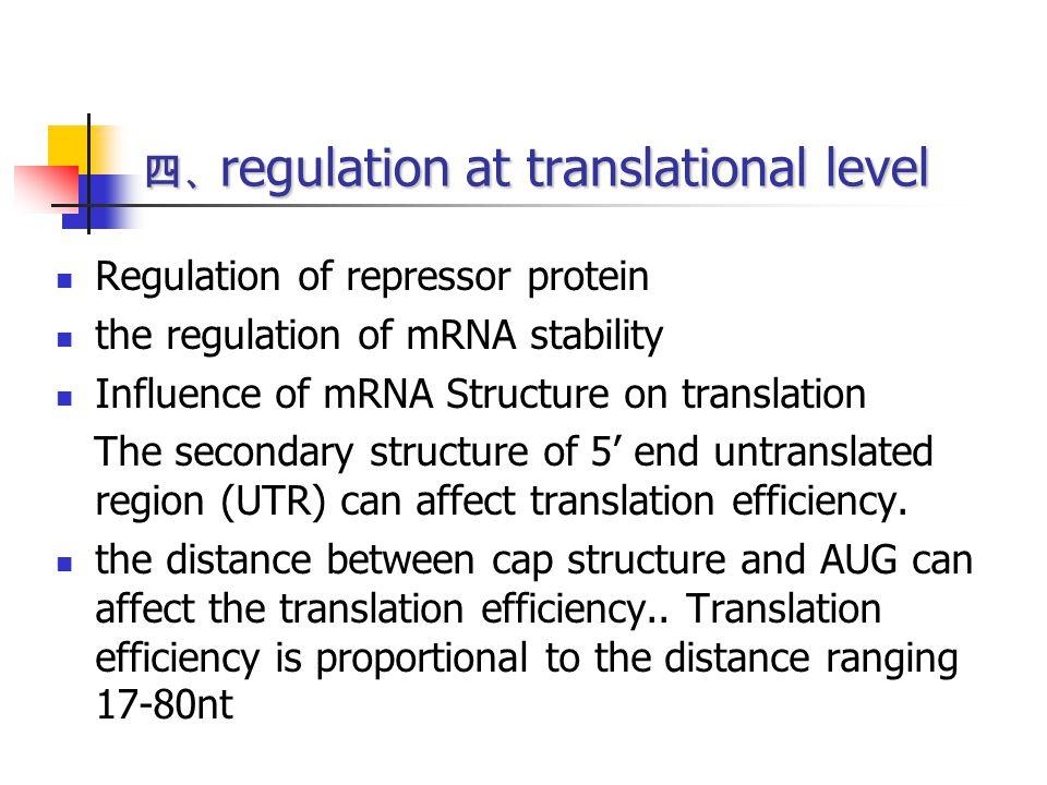 四、regulation at translational level