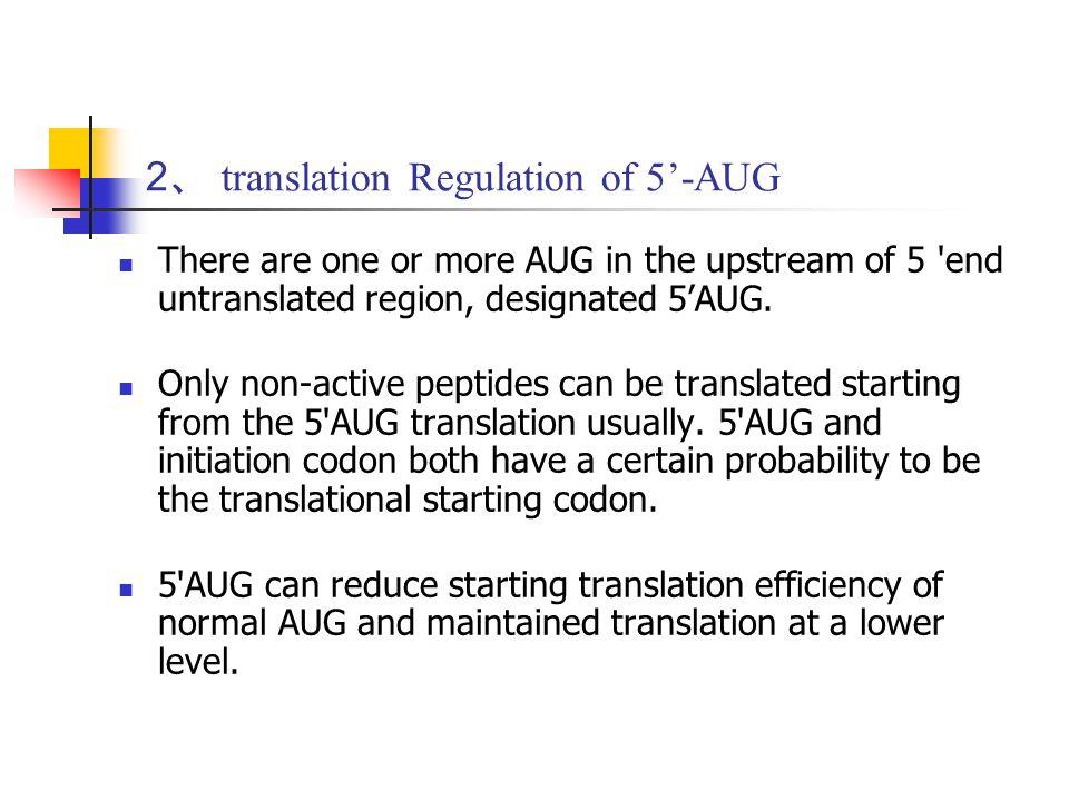 2、 translation Regulation of 5'-AUG