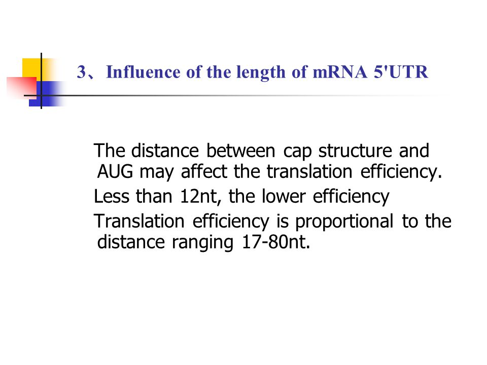 3、Influence of the length of mRNA 5 UTR