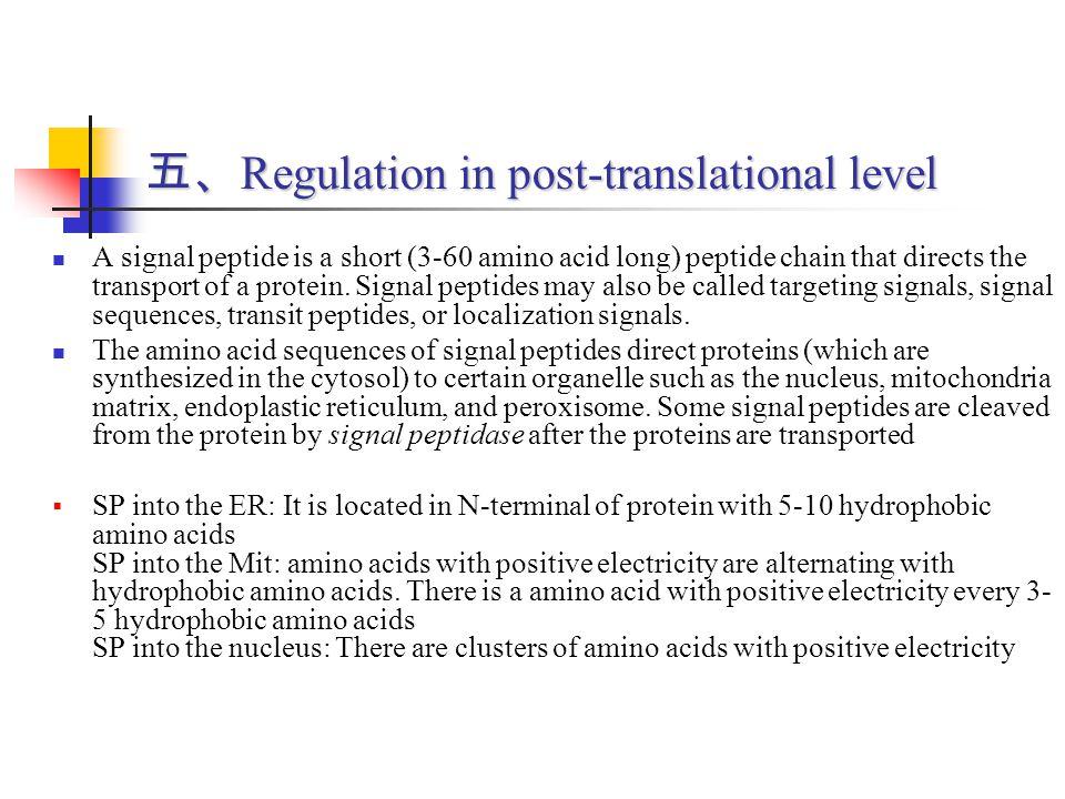 五、Regulation in post-translational level