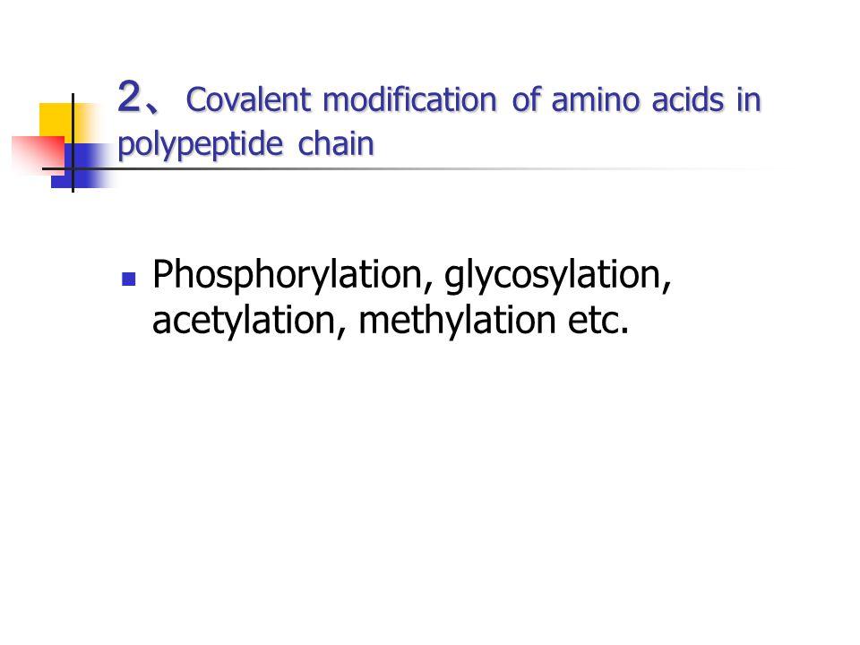 2、Covalent modification of amino acids in polypeptide chain