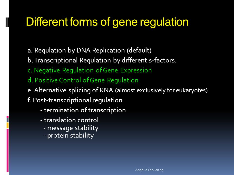 Different forms of gene regulation