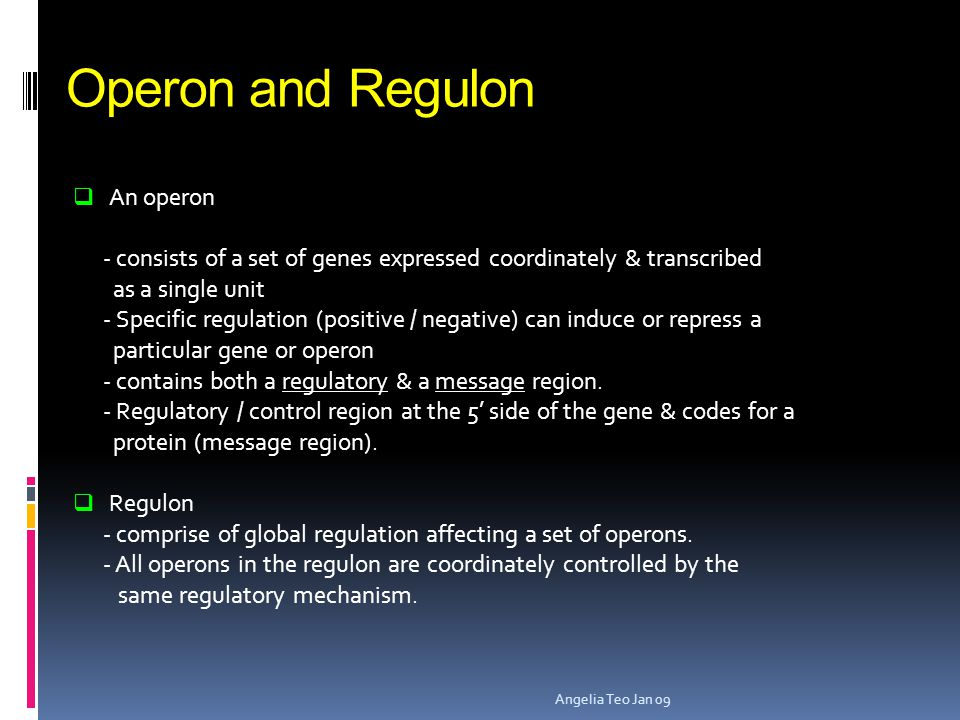 Operon and Regulon An operon
