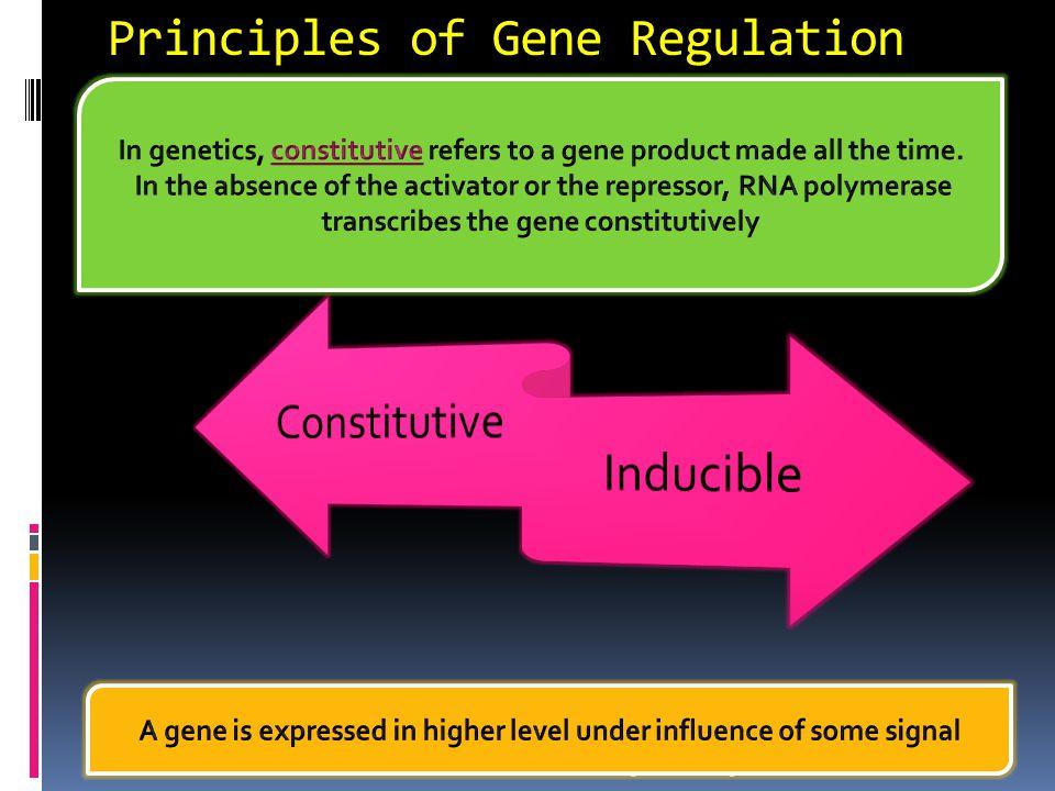 Principles of Gene Regulation