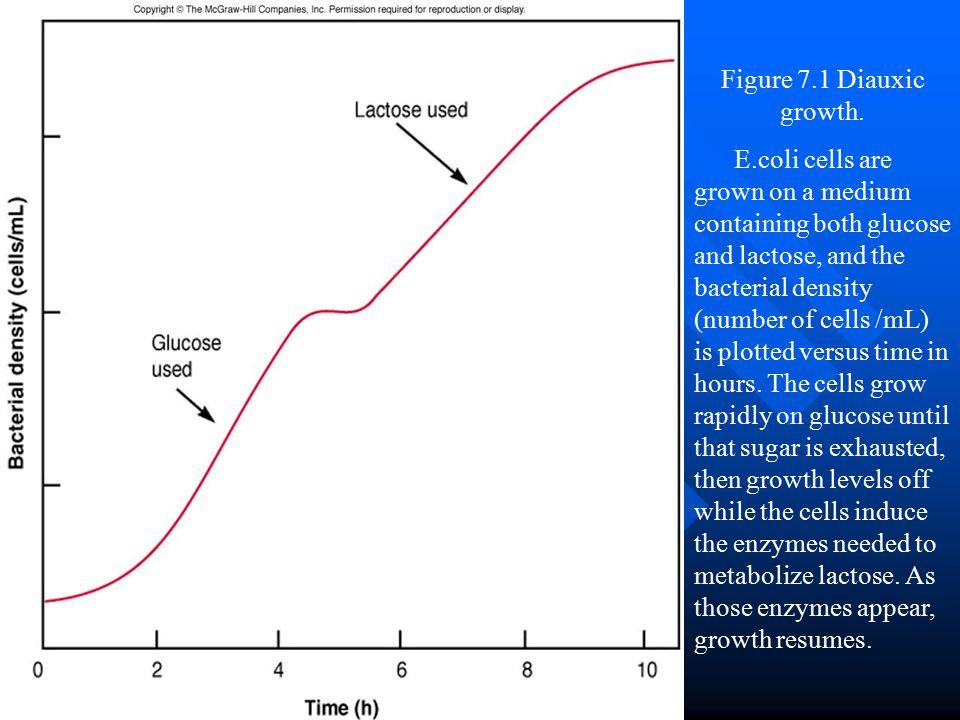 Figure 7.1 Diauxic growth.