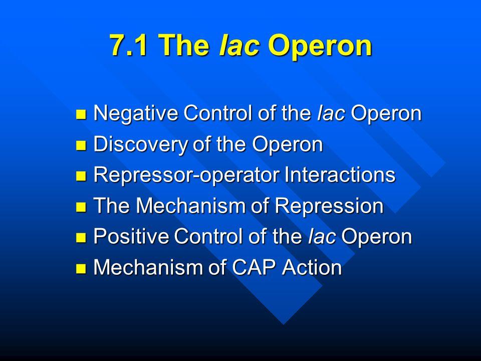 7.1 The lac Operon Negative Control of the lac Operon