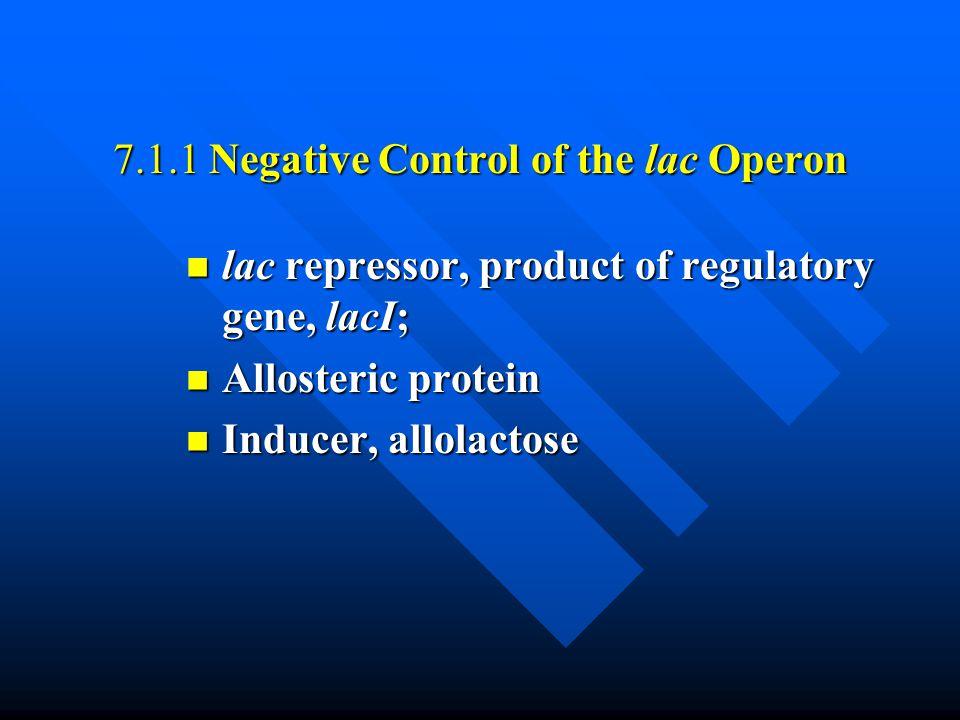 7.1.1 Negative Control of the lac Operon