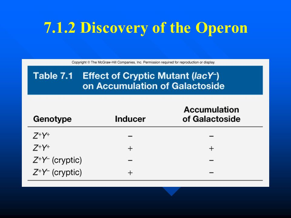 7.1.2 Discovery of the Operon