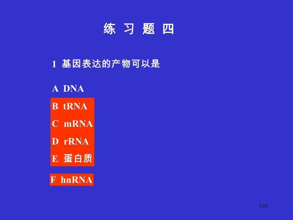 练 习 题 四 1 基因表达的产物可以是 A DNA B tRNA C mRNA D rRNA E 蛋白质 F hnRNA