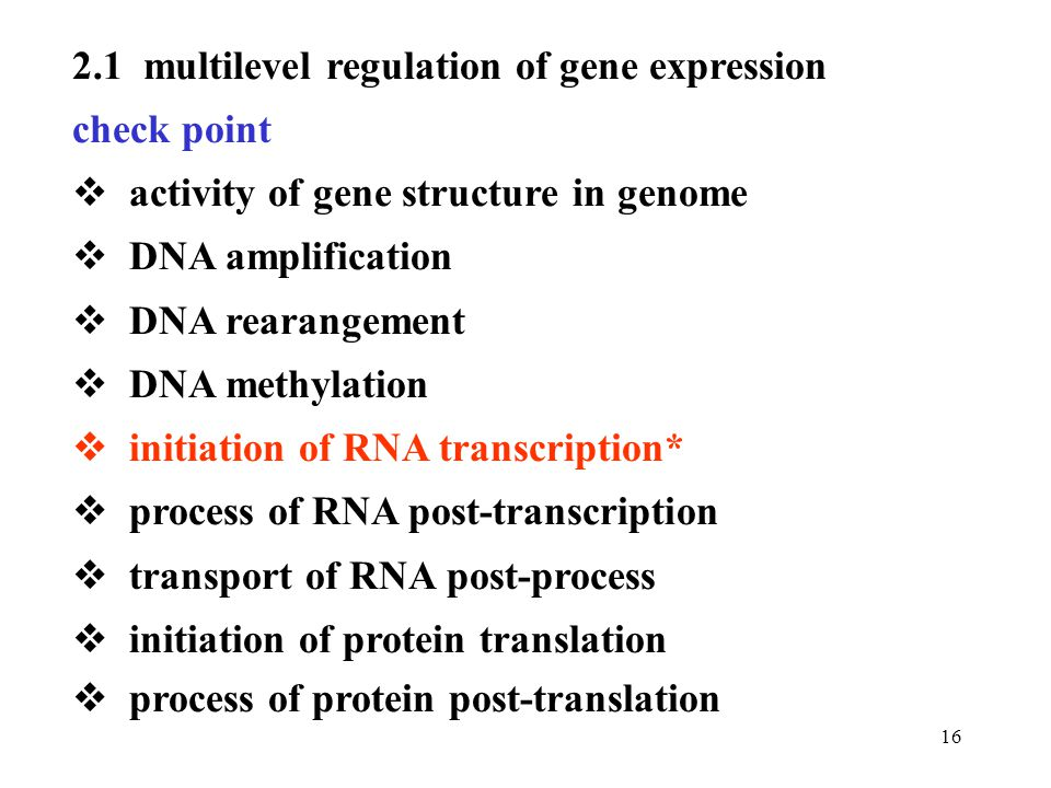 2.1 multilevel regulation of gene expression