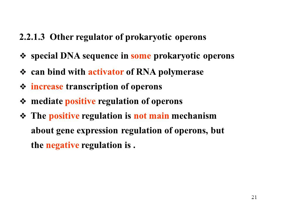 2.2.1.3 Other regulator of prokaryotic operons