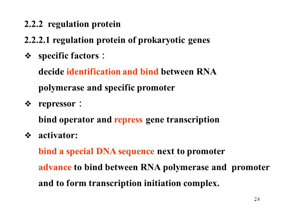 2.2.2.1 regulation protein of prokaryotic genes