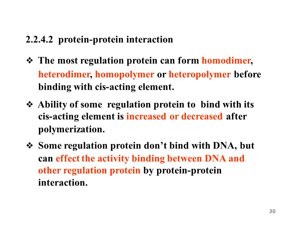 2.2.4.2 protein-protein interaction