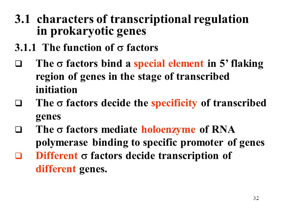 3.1 characters of transcriptional regulation in prokaryotic genes