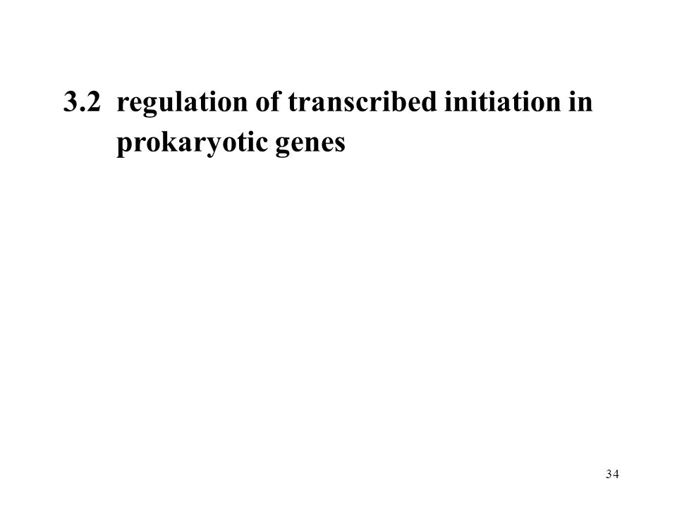 3.2 regulation of transcribed initiation in