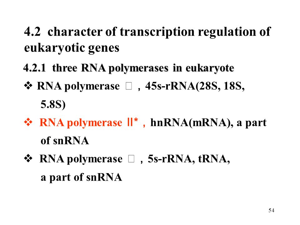 4.2 character of transcription regulation of eukaryotic genes