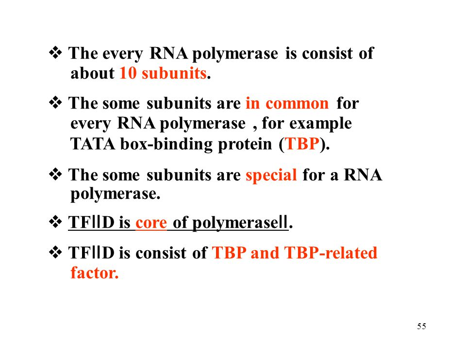  The every RNA polymerase is consist of