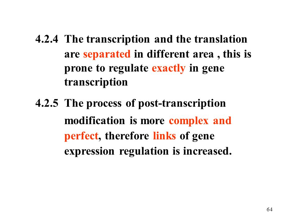 4.2.4 The transcription and the translation