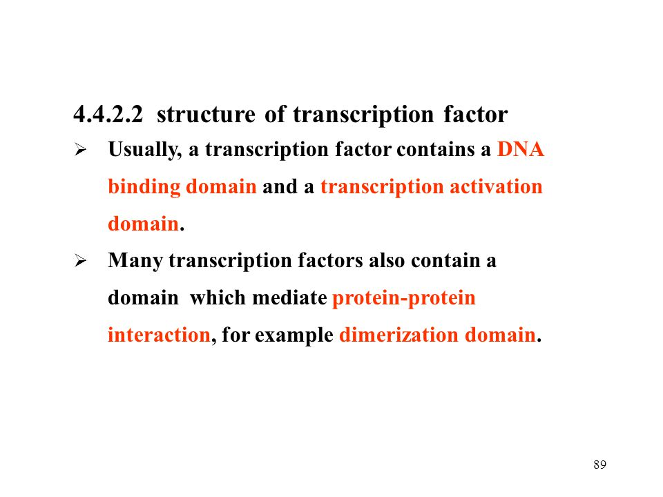 4.4.2.2 structure of transcription factor
