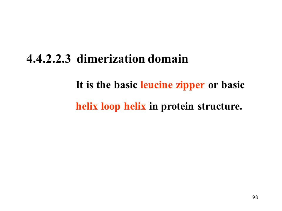4.4.2.2.3 dimerization domain It is the basic leucine zipper or basic