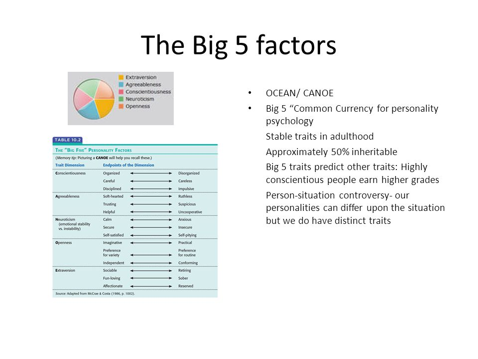 The Big 5 factors OCEAN/ CANOE