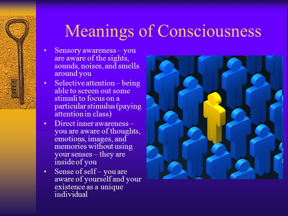 Meanings of Consciousness