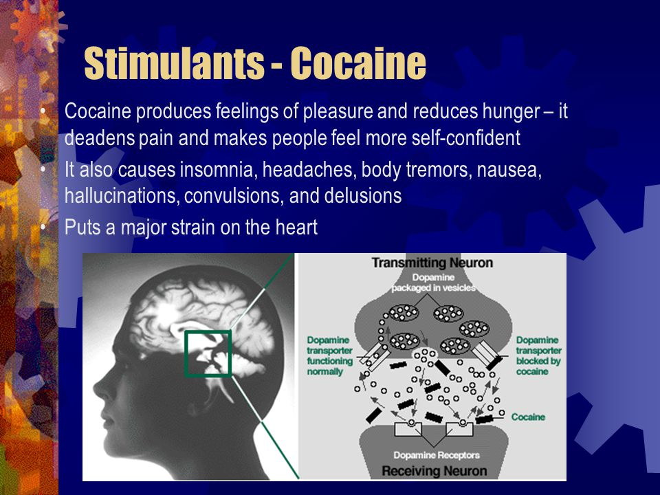 Stimulants - Cocaine Cocaine produces feelings of pleasure and reduces hunger – it deadens pain and makes people feel more self-confident.