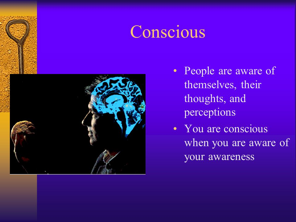 Conscious People are aware of themselves, their thoughts, and perceptions.