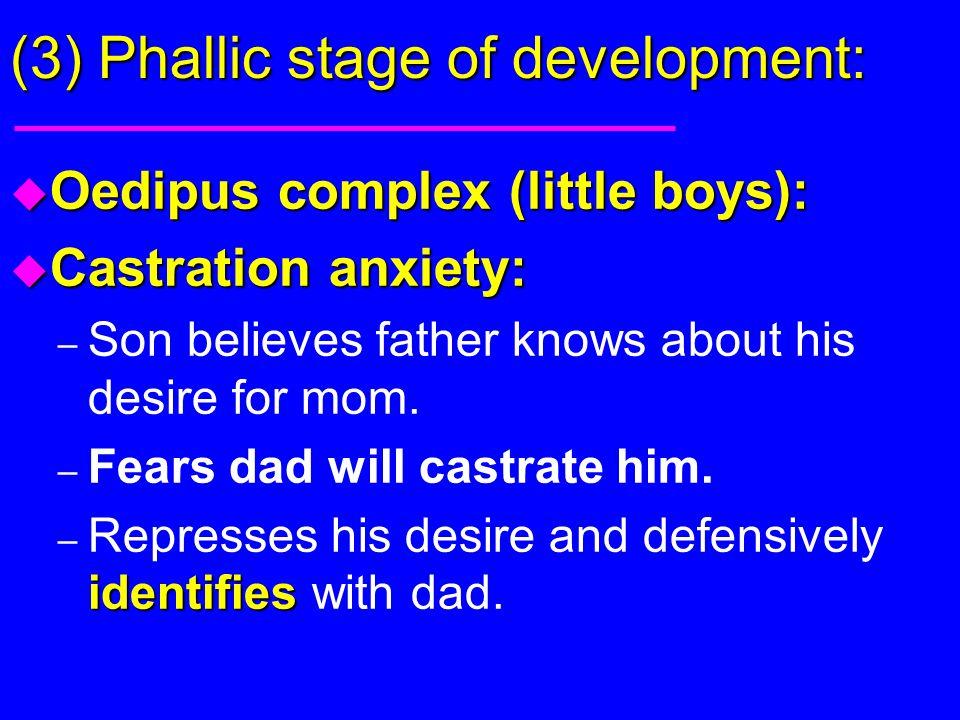 (3) Phallic stage of development:
