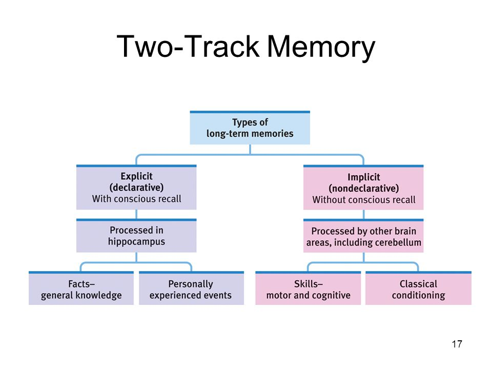 Two-Track Memory