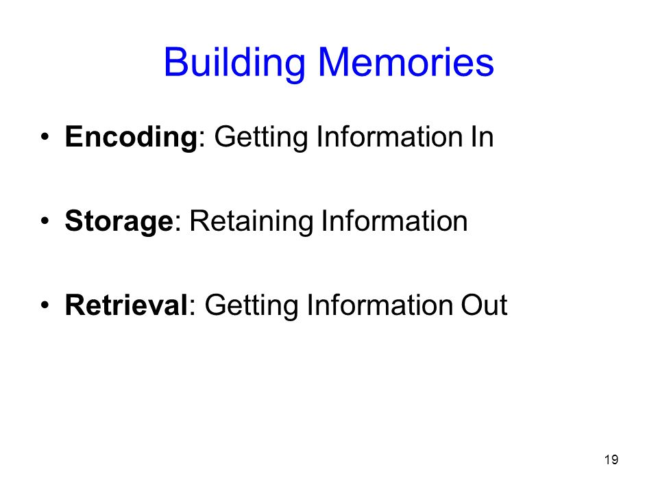 Building Memories Encoding: Getting Information In
