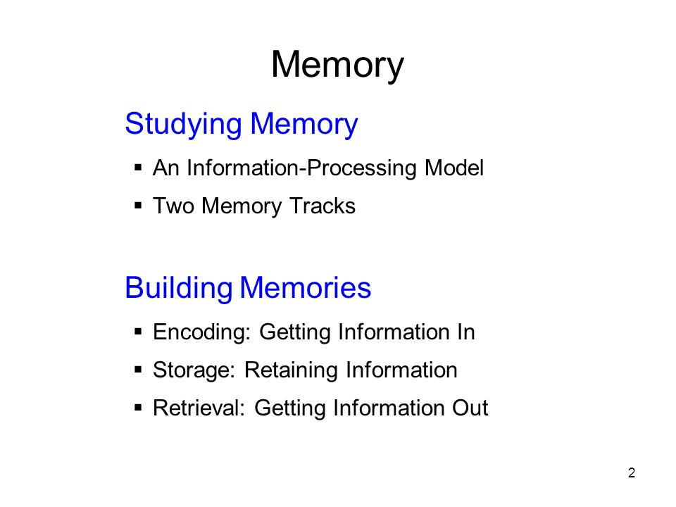 Memory Studying Memory Building Memories