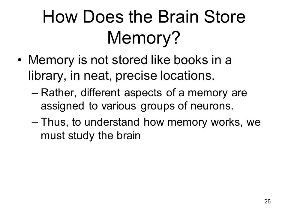 How Does the Brain Store Memory