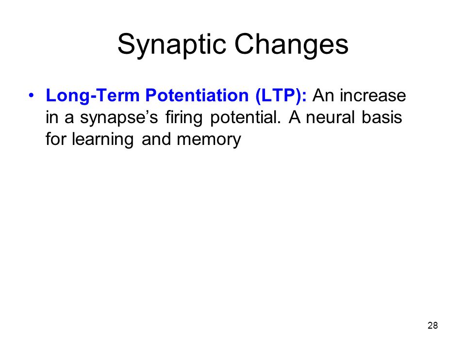 Synaptic Changes Long-Term Potentiation (LTP): An increase in a synapse's firing potential.