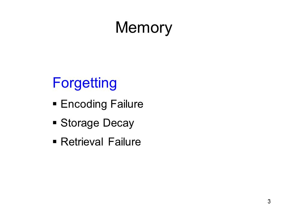 Memory Forgetting Encoding Failure Storage Decay Retrieval Failure